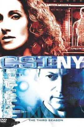 犯罪现场调查:纽约第三季