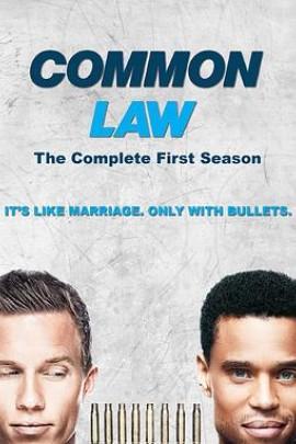 共同法则第一季