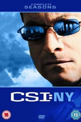 犯罪现场调查:纽约第六季