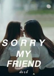 抱歉我的朋友