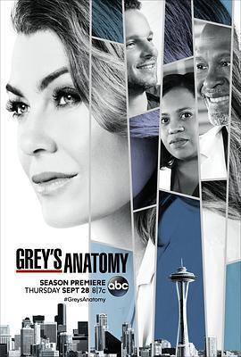 實習醫生格蕾第十四季